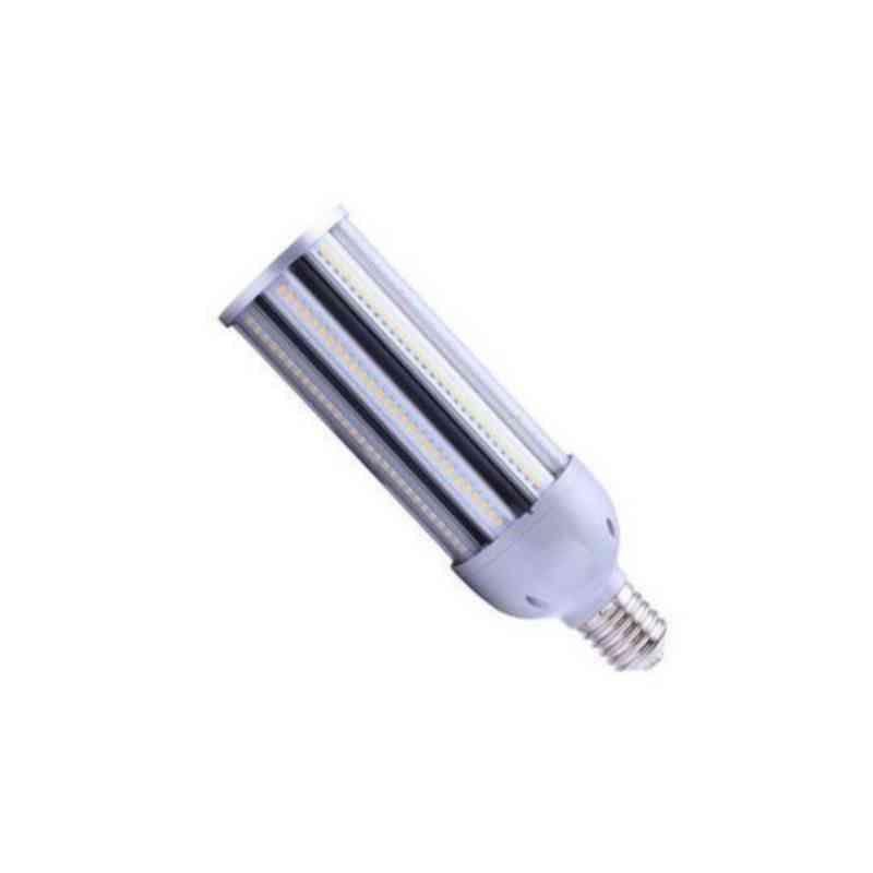 24 v 24w Bus Bulbs Hand lamp Pack of 10